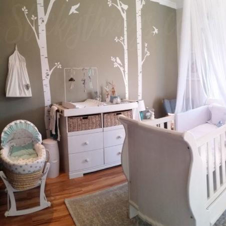 White Birch Trees Vinyl in a baby nursery