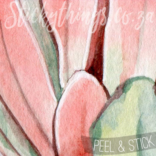 Close up of the Protea Wall Art
