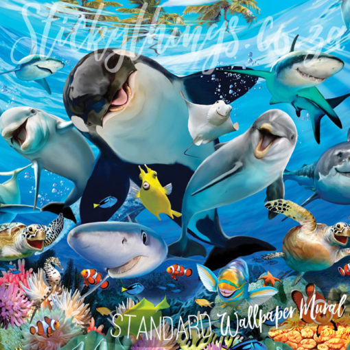 Close up of the detail in the Underwater Killer Whale Dolphin Shark Mural