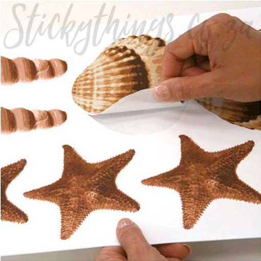 Super easy, just Peel and Stick Shell Wall Stickers